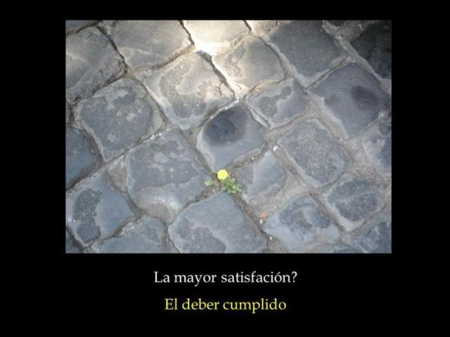 La mayor satisfaccion