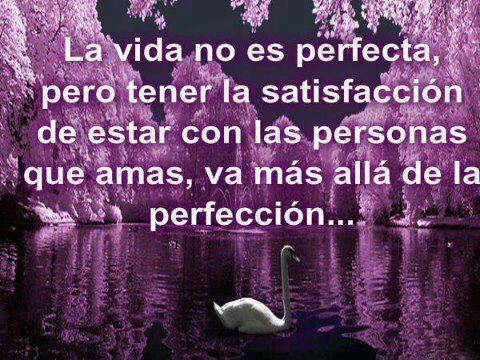 La vida no es perfecta