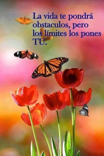 La vida te impondra limites