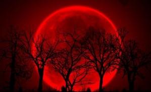 Hermosa luna roja