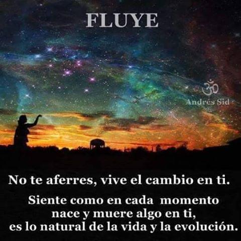 fLUYE