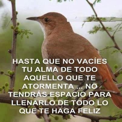 hASTA QUE NO VACIES TU ALMA DE TODO AQUELLO QUE TE ATORMENTA.png