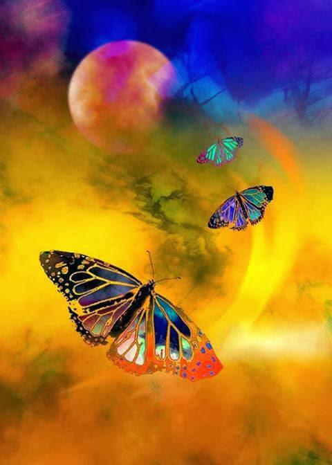 Planeta con mariposa
