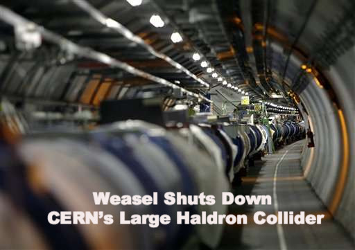 Cern large collider shuts down