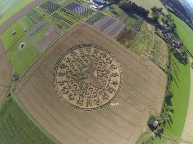 Crop Circle August 12