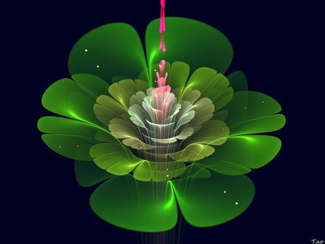loto-verde