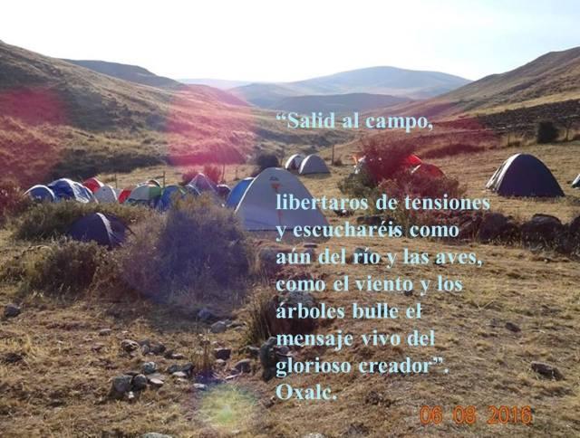 salid-al-campo-liberar-tensiones