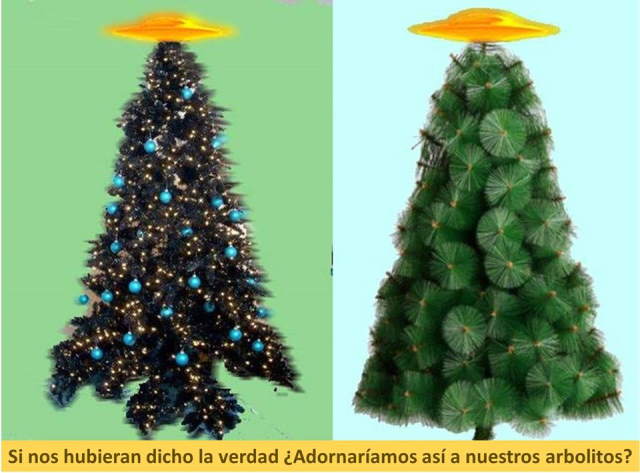 Arbolitos de Navidad.png