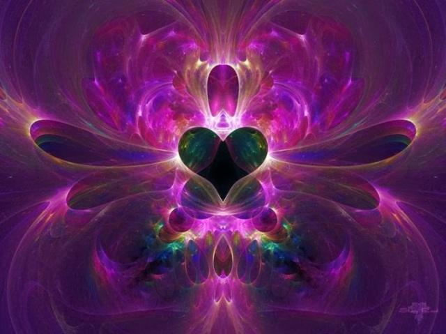 llama-violeta-transformadora