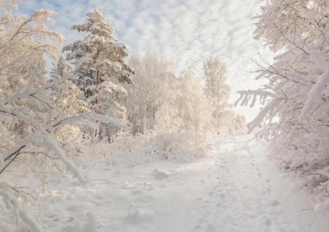 rusia-invierno-polar