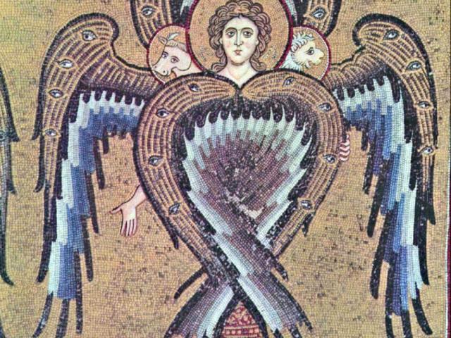 birds-angeles