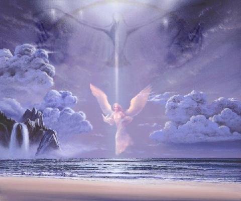 paloma angel de la Fe