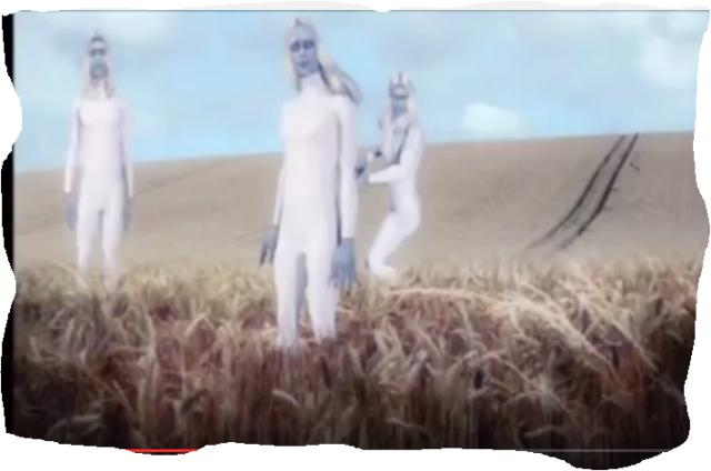 Extraterrestress son los que crean los Circulos de las Cosechas.