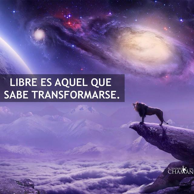 Libre es aquel que sabe