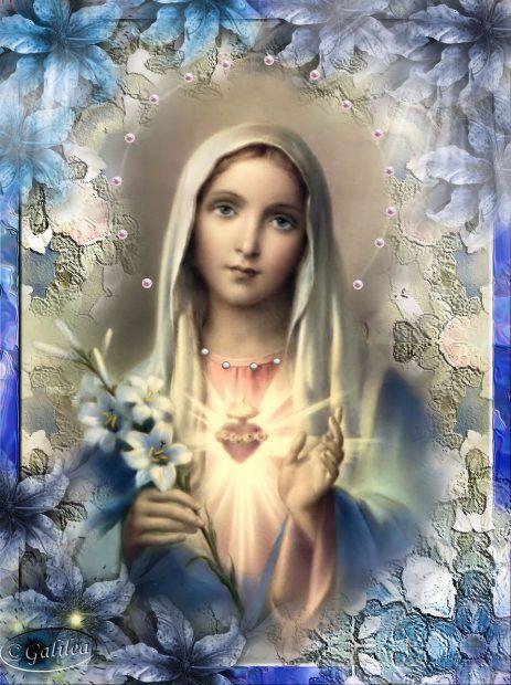 Maria hrmosa
