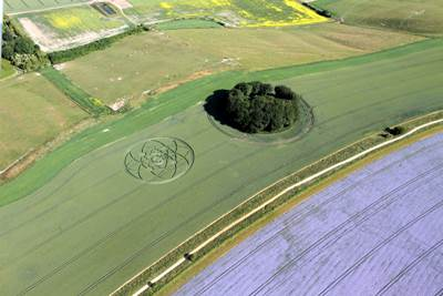 Crop Circle conflicto nclear 4