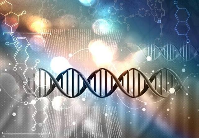 DNA Frecuencia