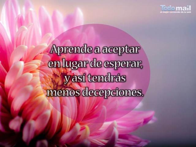 aprende a aceptar
